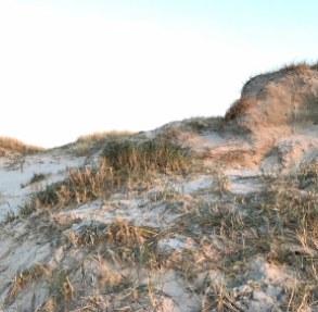Sanddüne im Sonnenuntergang (Foto: privat)